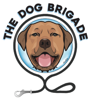 Dog Trainer Bondi | Dog Trainer Sydney's Eastern Suburbs Logo