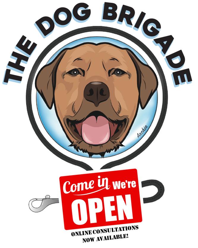 Dog Trainer Bondi | Dog Trainer Sydney's Eastern Suburbs Logo
